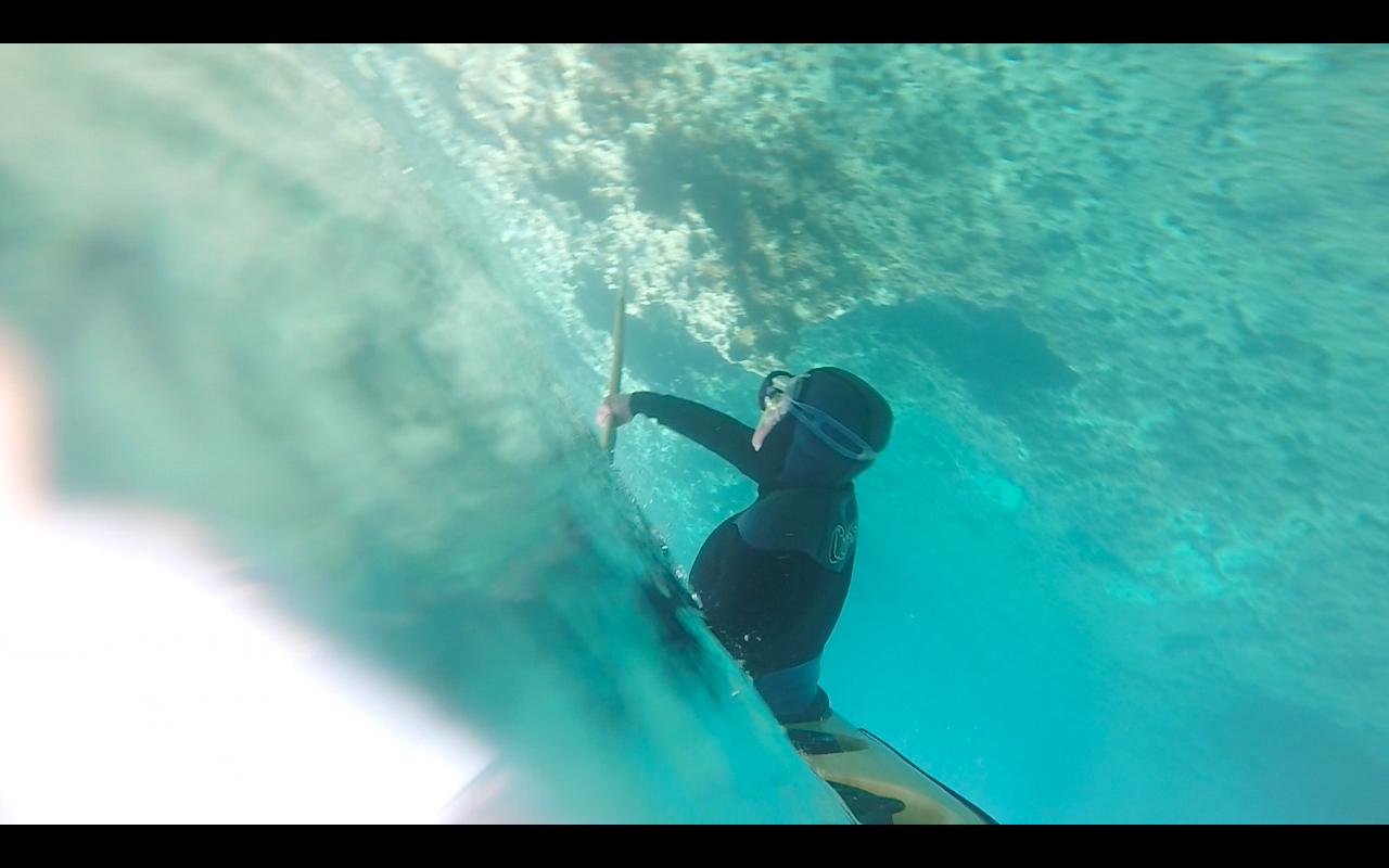 Nautilus Kayaks 2019-04-10 a las 19.59.59 copia
