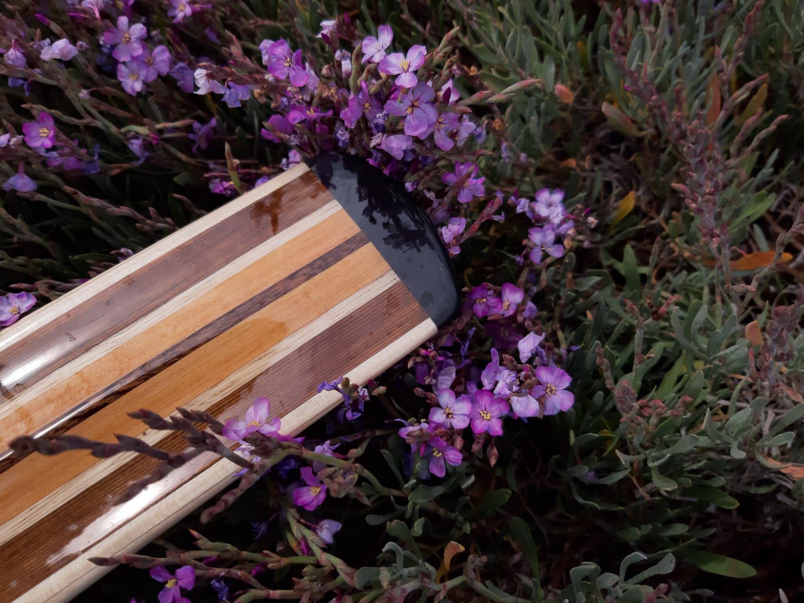 palas groenlandesas flores 1